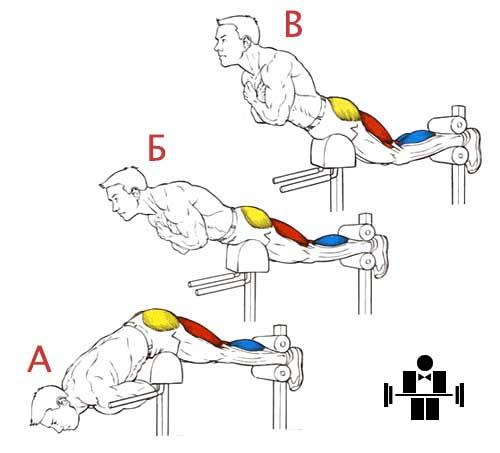 Упражнение гиперэкстензии для мышц бедра