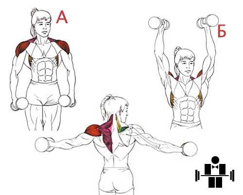 Упражнение подъем через стороны
