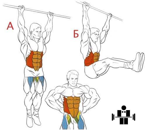 Упражнение подъем ног в висе