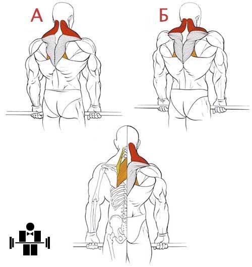 Упражнение шраги со штангой