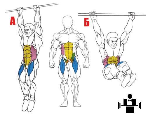 Упражнение подъем коленей в висе