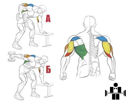Упражнение разгибание руки в наклоне