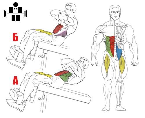 Упражнение скручивания на наклонной скамье