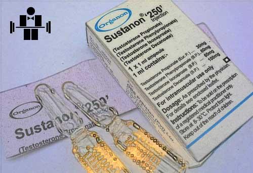 sustanon_250