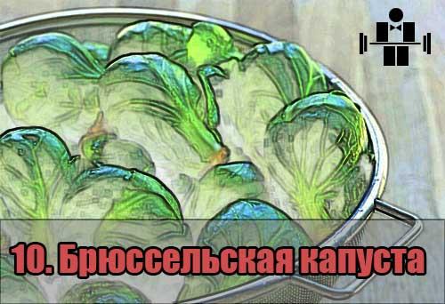 belkovaya_eda_brusselskaya_10