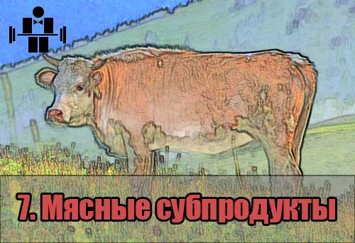 belkovaya_eda_myasnie_subprodukti_7