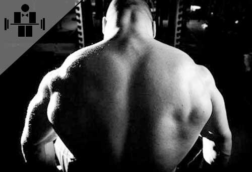 Боль в спине за грудной клеткой