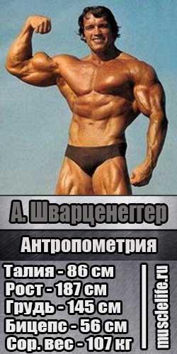 arnold_shwarzenegger_luchshie_bodybuilderi