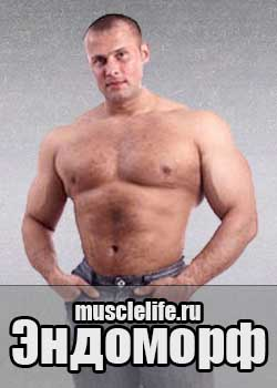 программа для эндоморфа для похудения