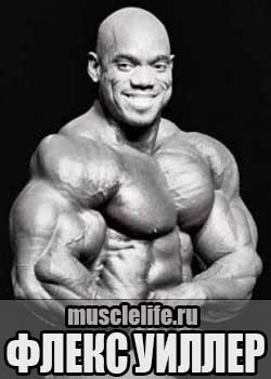 Flex_Wheeler_1