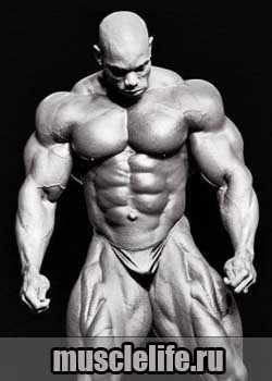 Flex_Wheeler_3