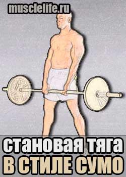 stanovaya_tyaga_sumo
