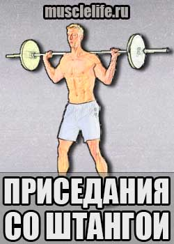 prisedaniya_so_shtangoi_powerlifting