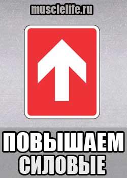 programma_na_silu_2